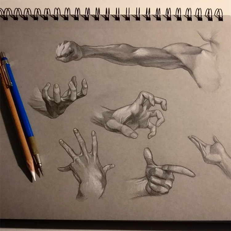 Detailed hand, finger & arm sketches