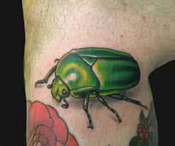 Beetle Tattoo 11